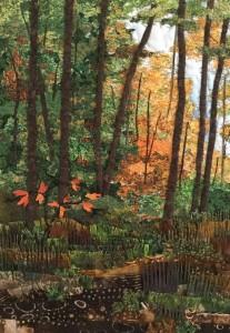 Ledyard Woods
